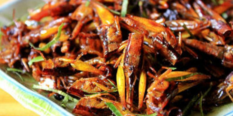 vinh-long-vung-dat-cua-nhung-mon-an-dan-gia