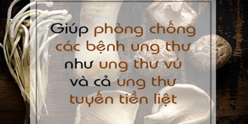 muon-khoe-dung-bo-qua-nam