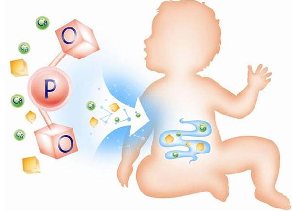 Cấu trúc OPO trong sữa tách béo bị loại bỏ khiến trẻ gặp khó khăn trong việc hấp thụ chất dinh dưỡng