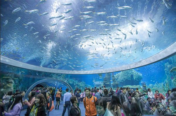 Viện Hải Dương học Nha Trang - Địa điểm du lịch Khánh Hòa đẹp