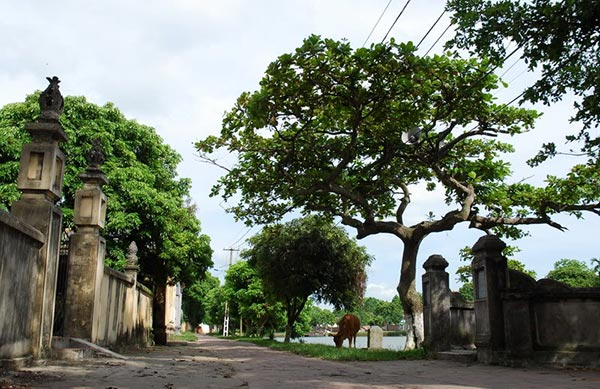 Làng Nôm là một trong những làng cổ cuối cùng còn sót lại ở Hưng Yên