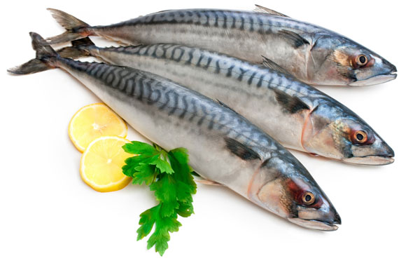 Bà bầu cần hạn chế ăn cá thu