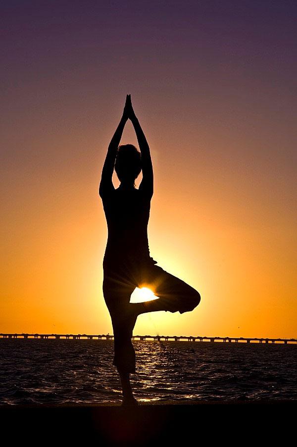 Tư thế cái cây trong yoga