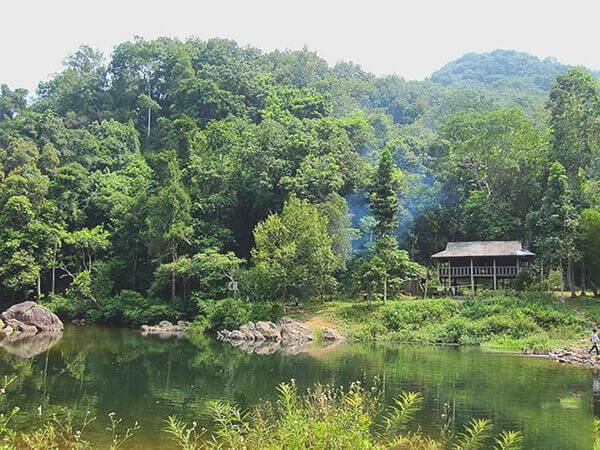Rừng nguyên sinh Khe Rỗ là khu rừng tiêu biểu cho vùng Đông bắc Việt Nam