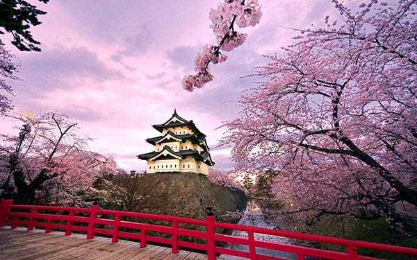 """Hàn Quốc """"chinh phục"""" du khách bằng cảnh sắc tuyệt đẹp và ẩm thực phong phú"""