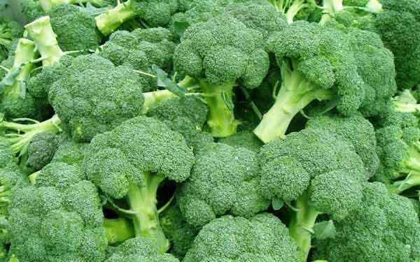 Cho trẻ ăn bông cải xanh là cách bổ sung Canxi an toàn cho trẻ