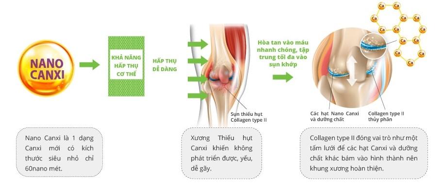 công dụng của Canxi nano với phát triển xương