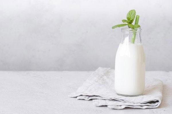 Uống sữa mỗi ngày là thói quen của nhiều người