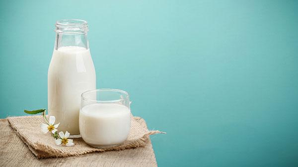 Sữa là nguồn bổ sung dinh dưỡng được các gia đình Việt tin chọn