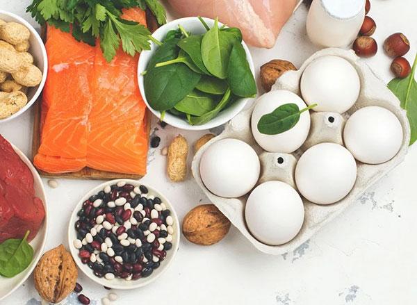 Thức ăn là nguồn dinh dưỡng không thể thay thế hoàn toàn