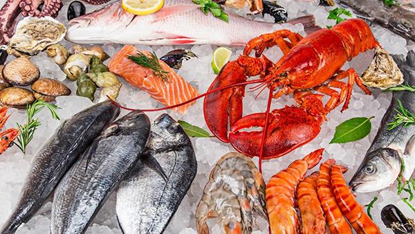 Hải sản là nguồn cung cấp Canxi dồi dào và chất lượng cho cơ thể