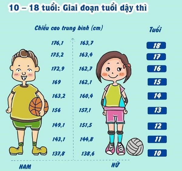 thuc-don-tang-chieu-cao-o-tuoi-18